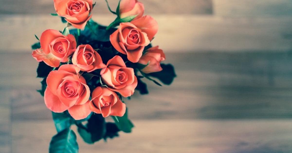 何必在愛情裡鬼打牆,只為了一句不甘心?