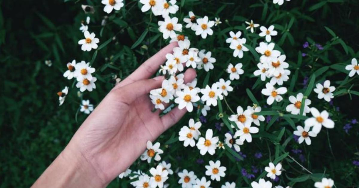 獨居女子生活手記:學著誠實,原諒世界與自己