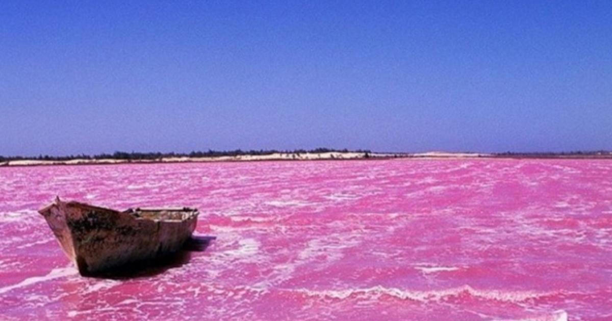 給玫瑰色的你!全世界最美的五大粉紅湖