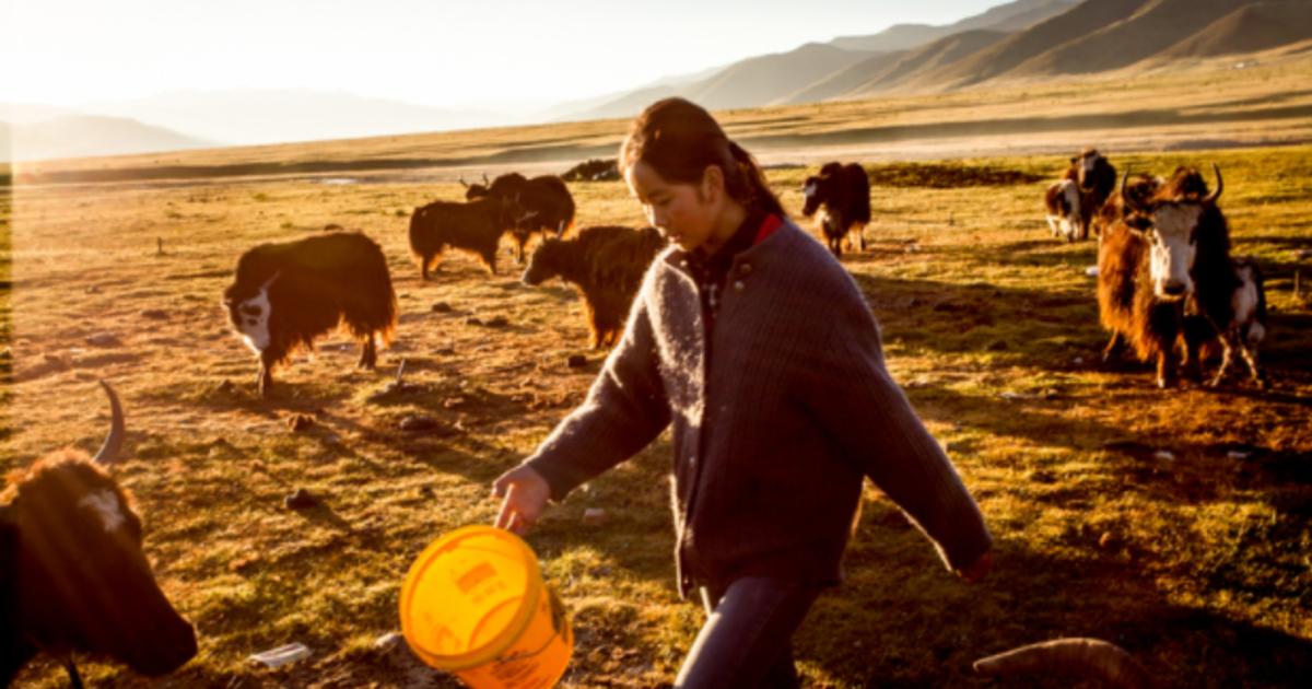 藏人的愛情自由觀:我愛你,就跟你流浪