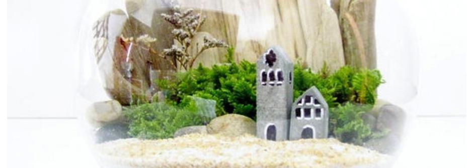 【設計DIY】迷你小世界創意造型盆栽 Terrarium