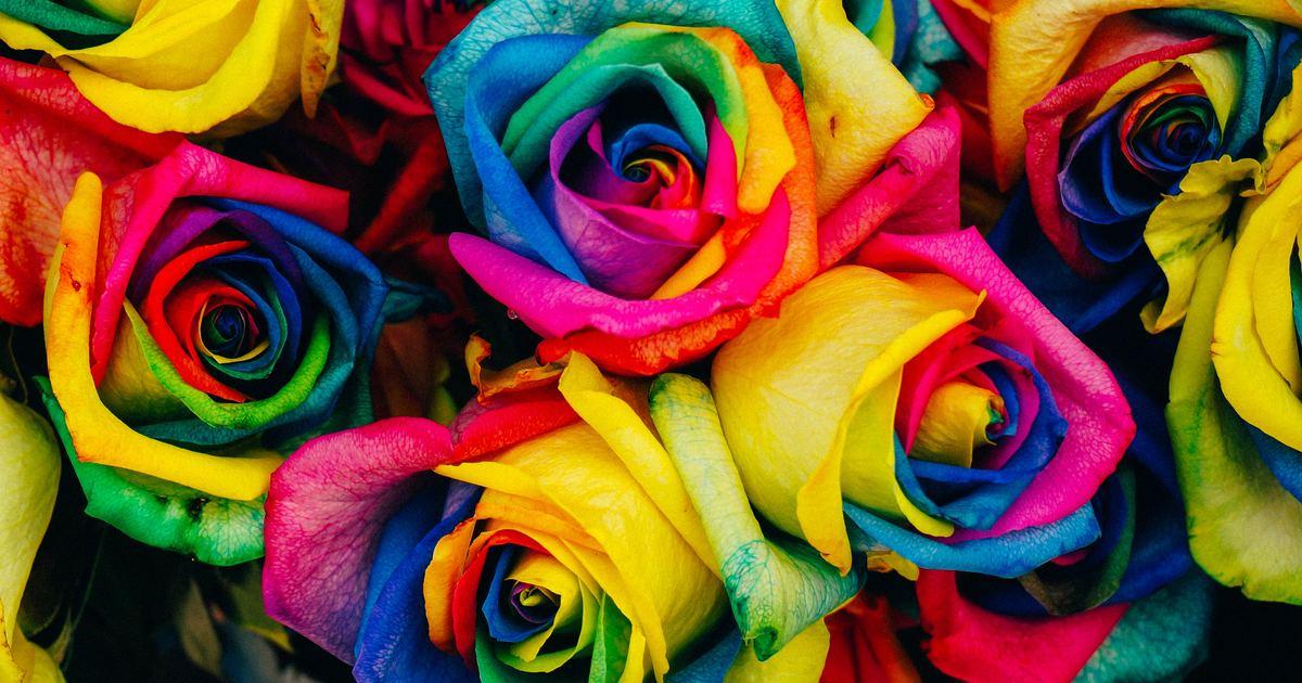 性別英語|聽過 LGBT,但你知道疑性戀、半無性戀該怎麼說嗎?