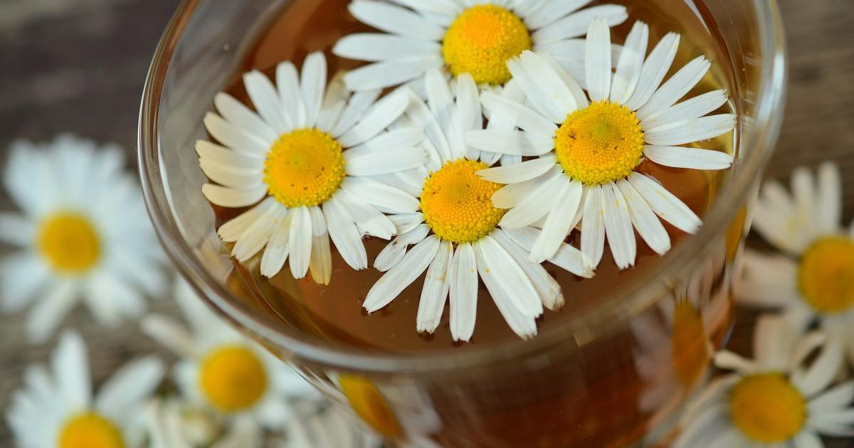 7 種抗焦慮食物:讓吃好好撫慰你
