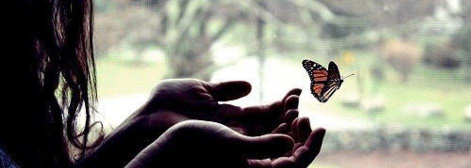 幸福的條件:愛就是放手讓你飛