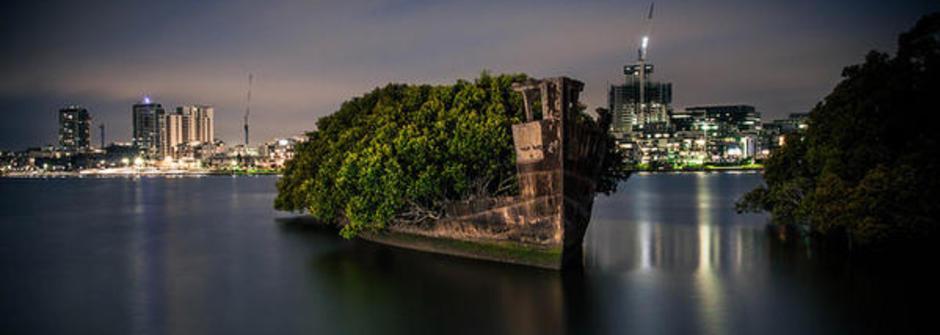 見證生命的奇蹟!澳洲雪梨 漂浮森林