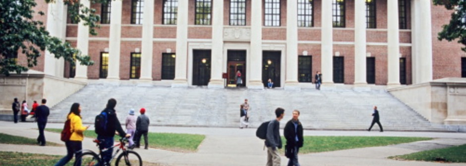 哈佛這樣挑學生!沒有專業就是最好的專業