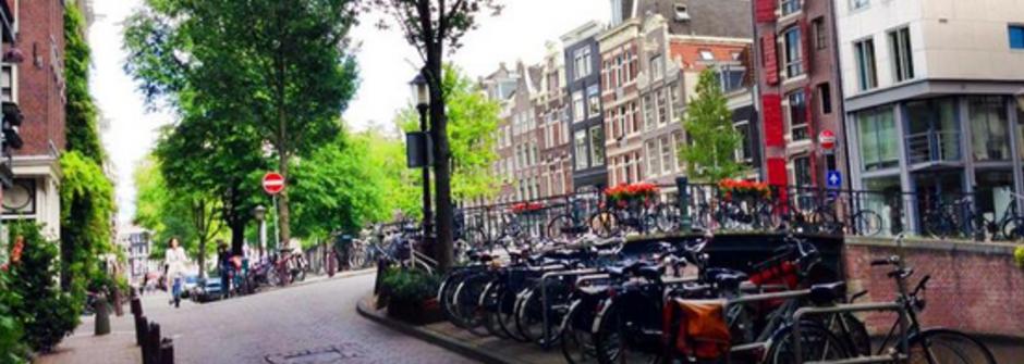 享受在荷蘭的單車好日子,人手一台單車的漂亮國度