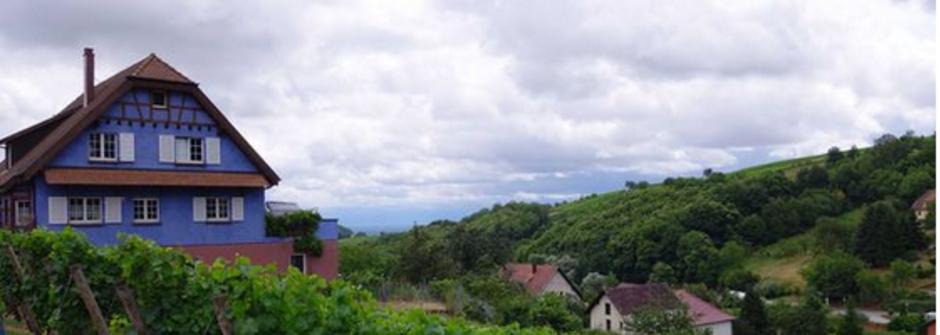 微醺的生活想像,法國 Alsace 的私藏酒莊