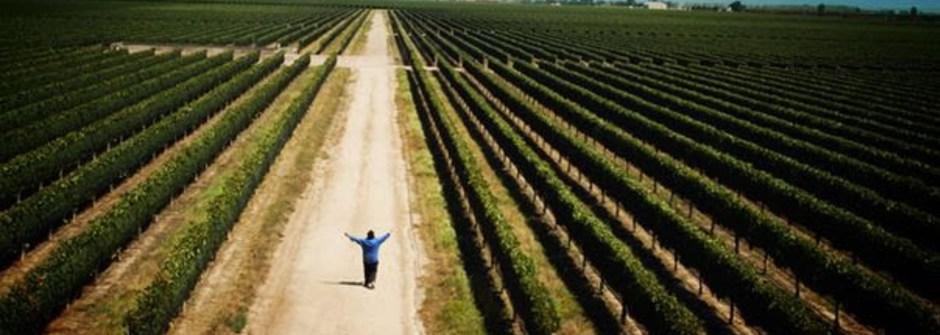 【活動】留言搶電影票活動〈葡萄酒之路〉