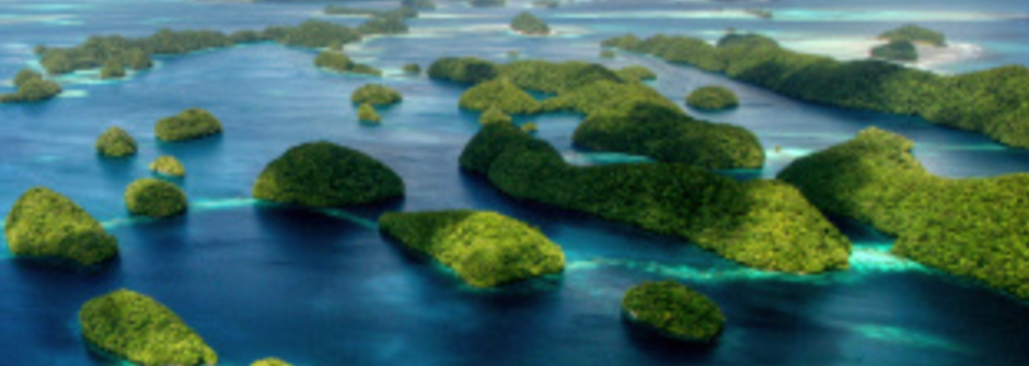 五分鐘洞見世界:阻止環境破壞!帛琉大砍中國包機航班