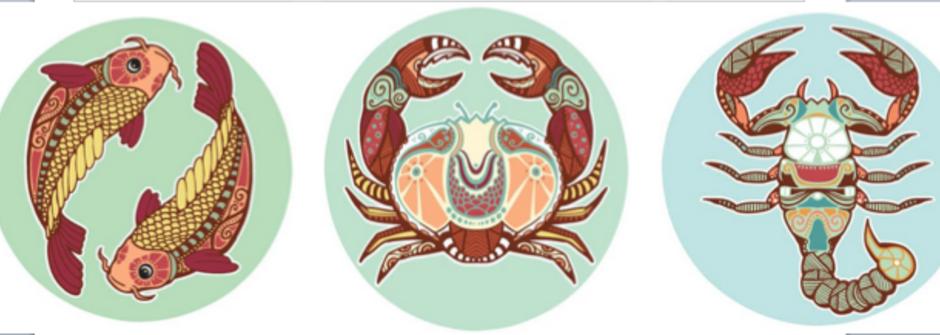 【蘇珊米勒星座專欄】雙魚、巨蟹、天蠍:水象星座的六月運勢