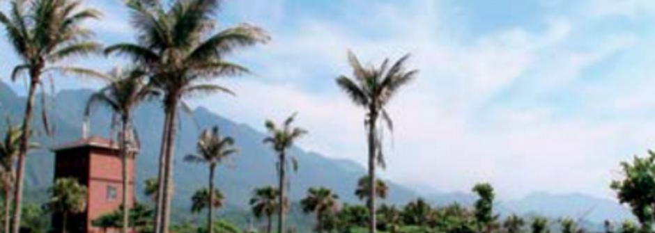 幸福旅店提案:三間擁抱海風的看海民宿