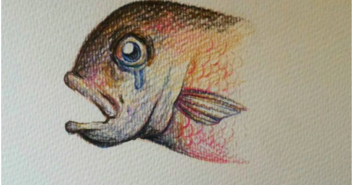 【大人的童話】流不出眼淚的馬頭魚