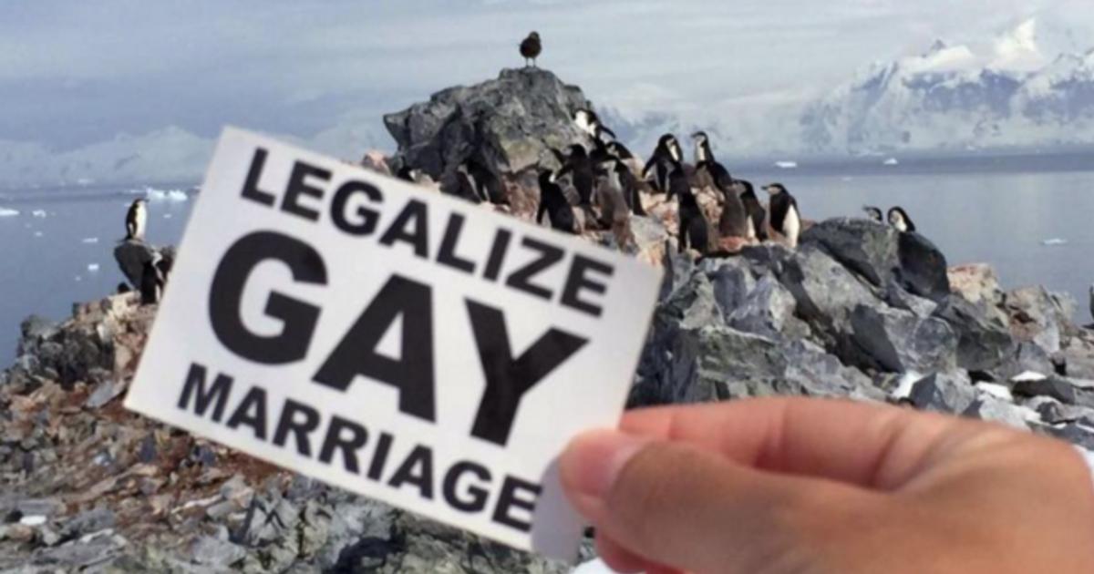 被蔡英文遺忘的婚姻平權?同志權益不只有「婚姻」一種解決之道