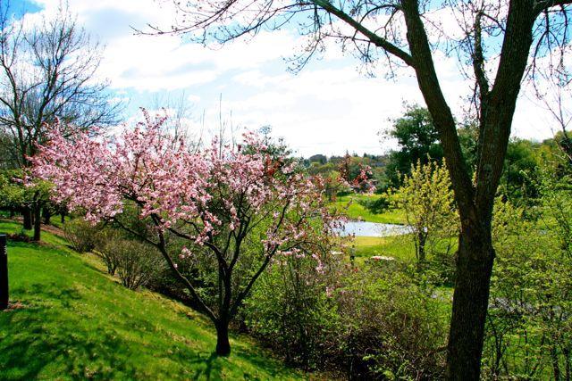 屬於我們的散心時光 春天