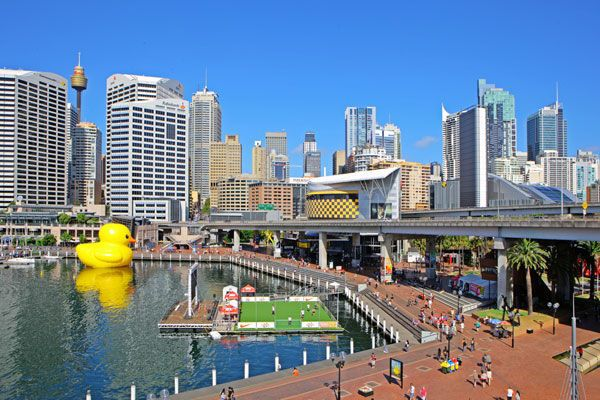 rubber duck、sydney