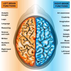 左腦右腦,跟個性一點關係也沒有