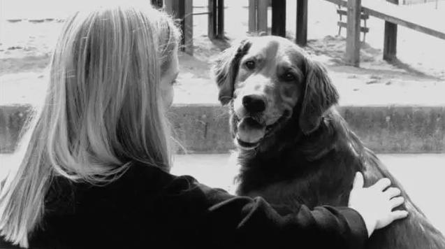 我養的狗救了抑鬱的我:牠給了我無聲的理解